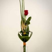ROSA INDIVIDUAL PREMIUM - FLORISTERIA BADALONA - FONTDEFLORS